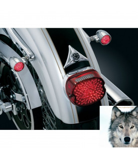 Cache Fixations Plaque Immatriculation Moto